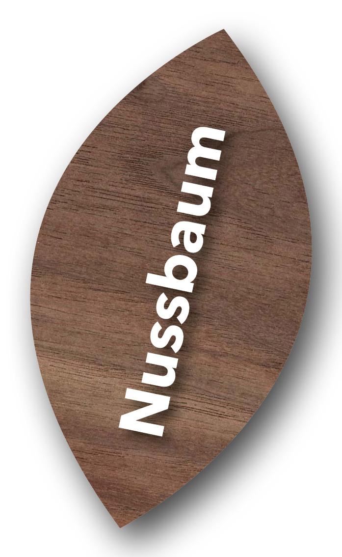 682938_Lacklasur_Nussbaum Dunkel_Farbtonpaspel